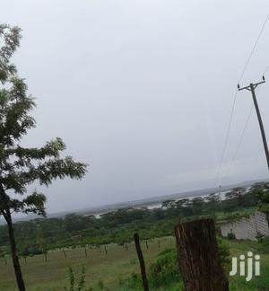 2 Acres Sale (Prime Land), 1KM From the Lake: Good View of Elementaita