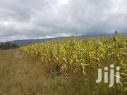 Prime Land in Nyandarua County | Land & Plots For Sale for sale in Nyandarua, Wanjohi
