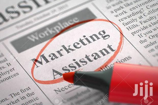 Archive: Marketing Assistant