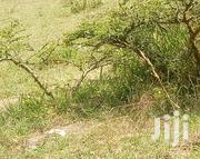 1acre and 1/8 for Sale in Rimpa Olosurutia 1km From Magadi Rd | Land & Plots For Sale for sale in Kajiado, Ongata Rongai