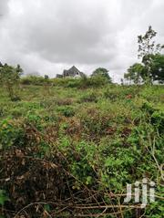 1/4 Acre Prime Plot for Sale in Thika – With Ready Title Deed | Land & Plots For Sale for sale in Kiambu, Thika