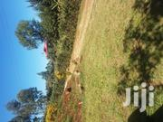 1/8 500 Meters Of Termac Rd Near Kamangu | Land & Plots For Sale for sale in Kiambu, Ndeiya