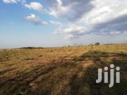 Land for Sale at Rongai   Land & Plots For Sale for sale in Nairobi, Nairobi Central