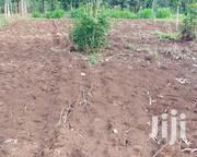 Quick Sale. 1/8ac Kagio-kiaga. Electricity, Water Available.   Land & Plots For Sale for sale in Kirinyaga, Inoi