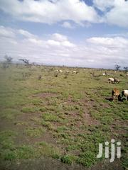 4.5 Acres Land At Segera For Sale | Land & Plots For Sale for sale in Laikipia, Segera