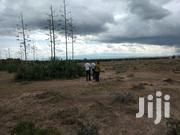 Land for Sale   Land & Plots For Sale for sale in Laikipia, Ngobit