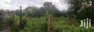 1⁄4 Acre In Ngong Town Serioully On Sale