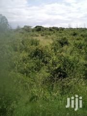 2 Acres Land for Sale at Sweetwaters, Nanyuki | Land & Plots For Sale for sale in Laikipia, Thingithu