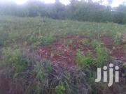 Makuyu 1 Acre   Land & Plots For Sale for sale in Murang'a, Kamahuha