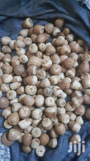 Buying Marina Or Tetra Or Aqua Seeds | Feeds, Supplements & Seeds for sale in Nairobi, Nairobi Central