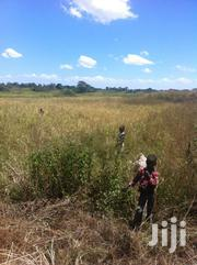 Agricultural Land for Sale | Land & Plots For Sale for sale in Busia, Amukura West
