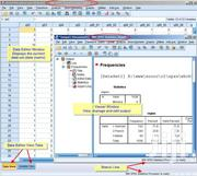 Data Analysis In SPSS | Computer & IT Services for sale in Homa Bay, Mfangano Island