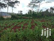Residential Land on Sale in Ngong | Land & Plots For Sale for sale in Kajiado, Ngong