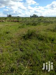 40*80 Plot Ruiru Murera Near Ndururumo Primary School | Land & Plots For Sale for sale in Kiambu, Murera