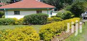 Appealing 3bedroom Bungalow to Let in Kileleshwa | Houses & Apartments For Rent for sale in Nairobi, Kileleshwa