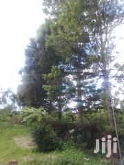 Koma Kangundo Road 100 Acres Asking 3m Per Acre | Land & Plots For Sale for sale in Machakos, Tala