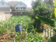 Serenely Located Residential Plot 50*100 With Title. | Land & Plots For Sale for sale in Kiambu, Murera