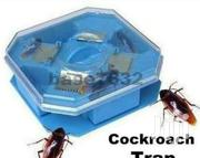 Cockroach Trap | Home Appliances for sale in Nairobi, Nairobi Central