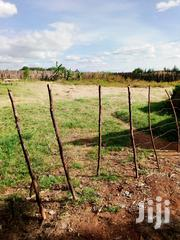 Land 500 Acres For Lease Five Years | Land & Plots for Rent for sale in Uasin Gishu, Langas