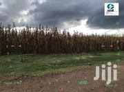 One Acre for Sale in Ngecha Njoro | Land & Plots For Sale for sale in Nakuru, Njoro