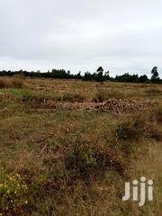 Land 5 Acres At Past Kabanes Very Prime Land 1.2m Per Acre | Land & Plots For Sale for sale in Uasin Gishu, Langas