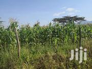 9 Acres Farm Land for Sale Subukia Kanyotu | Land & Plots For Sale for sale in Nakuru, Subukia