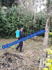 Fumigation, Pest Control And Cleaning Services | Cleaning Services for sale in Nairobi, Woodley/Kenyatta Golf Course