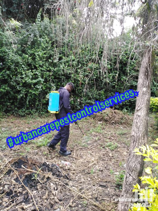 Fumigation, Pest Control And Cleaning Services