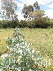 50 By 100 4 Sale | Land & Plots For Sale for sale in Nakuru, Naivasha East