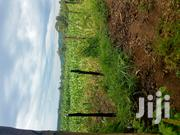 Rongai Nakuru Land For Lease | Land & Plots for Rent for sale in Nakuru, Soin (Rongai)