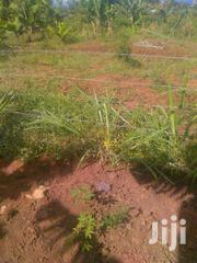 Half An Acre On Sale | Land & Plots For Sale for sale in Bungoma, Bukembe East