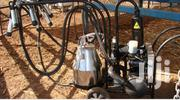 Milking Machine | Farm Machinery & Equipment for sale in Nairobi, Westlands