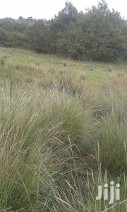 Endarasha, Kinyaiti, Nyeri County | Land & Plots For Sale for sale in Nyeri, Mwiyogo/Endarasha