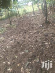 Plot With Title Deed | Land & Plots For Sale for sale in Bungoma, Bukembe East