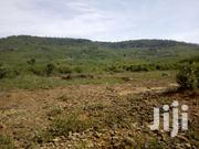 8.5 Acres Vacant Prime Land For Sale - RIAT | Land & Plots For Sale for sale in Kisumu, Kisumu North