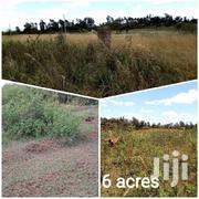 6 Acres at 2.9M, 70mtrs From Tarmac Road | Land & Plots For Sale for sale in Murang'a, Makuyu