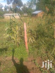 Full Plot On Sale | Land & Plots For Sale for sale in Bungoma, Bukembe East