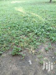 Affordable 1/2 Acre Land At Ksh 3.3M At Mariakani Area Kwale | Land & Plots For Sale for sale in Kilifi, Mwawesa