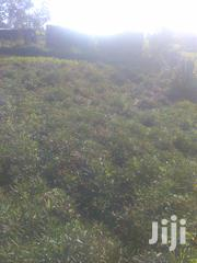 Two Full Plots On Sale Along Nairobi-malaba Highway Under One Piece. | Land & Plots For Sale for sale in Bungoma, Bukembe East