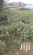 1/8 Acre Ngangarithi, Nyeri | Land & Plots For Sale for sale in Rware, Nyeri, Kenya