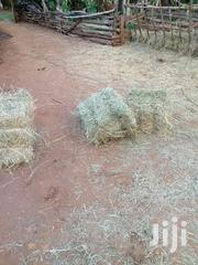 Pure Rhodes Hay   Feeds, Supplements & Seeds for sale in Nyandarua, Central Ndaragwa