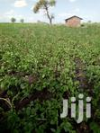 Cheap 6 Acres in Mwea-Mbeere South | Land & Plots For Sale for sale in Makima, Embu, Kenya