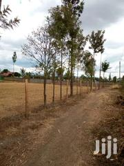 Plots For Sale With Read Title Deed Electricity | Land & Plots For Sale for sale in Nakuru, Lanet/Umoja