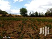 Looking For Shamba In Nyandarua? | Land & Plots For Sale for sale in Nyandarua, Karau