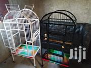 Parrot Cage | Pet's Accessories for sale in Mombasa, Tudor