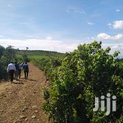 Ofis Ngeny 1 Acres for Sale | Land & Plots For Sale for sale in Kisumu, Central Kisumu