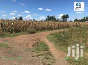 Four Acre Land for Sale in Piave | Land & Plots For Sale for sale in Nakuru, Njoro
