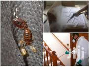 Control Bedbugs Services | Cleaning Services for sale in Nairobi, Nyayo Highrise