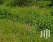 50000 Acres for Sale | Land & Plots For Sale for sale in Kilifi, Gongoni