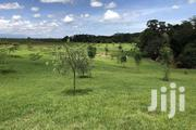 Most Prime 300 Acre Property for Sale in Nanyuki | Land & Plots For Sale for sale in Laikipia, Nanyuki